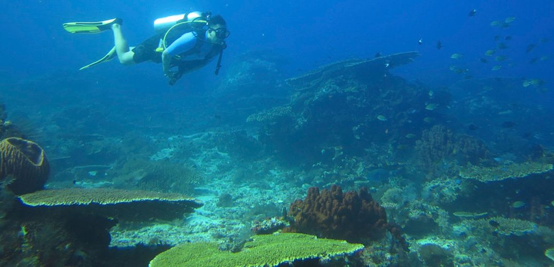 Best Diving Sites in Southeast Asia