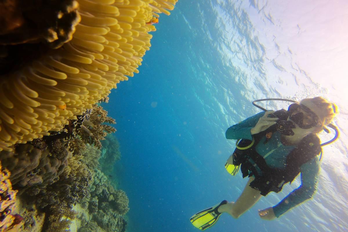 Raja-Ampat-Divers-Paradise-LAMIMA-Luxury-Sailing-Yacht-Charter-4