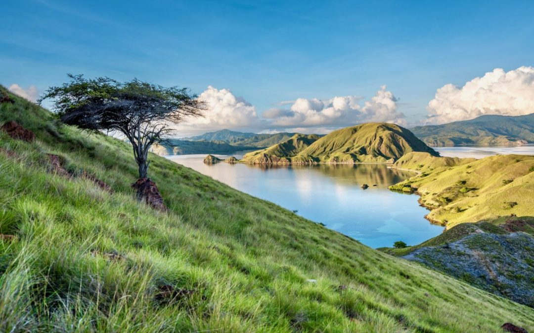 Land. Lair. Legends. Komodo National Park